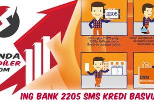Ing Bank 2205 Sms Kredi Başvurusu