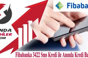 Fibabanka sms kredi